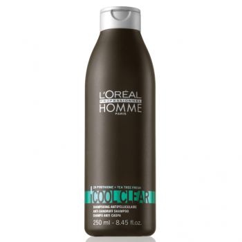 Loreal Homme Shampoo Cool Clear Anti-Caspa 250ml